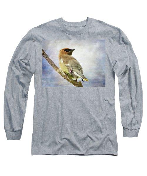 Backward Glance Long Sleeve T-Shirt