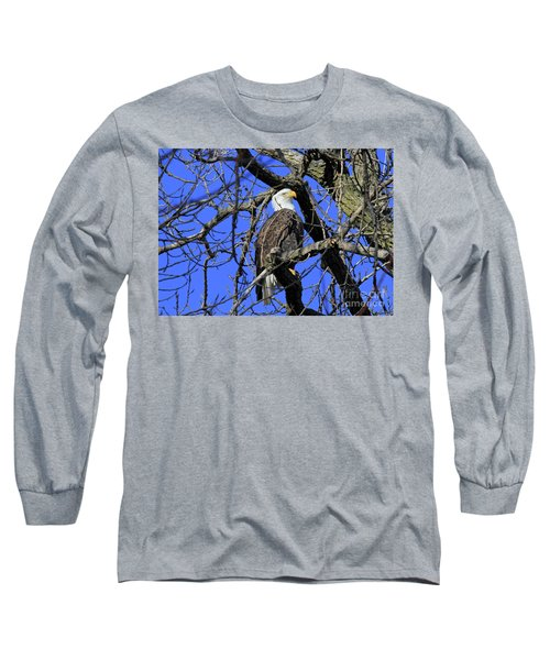 Long Sleeve T-Shirt featuring the photograph Bald Eagle by Paula Guttilla