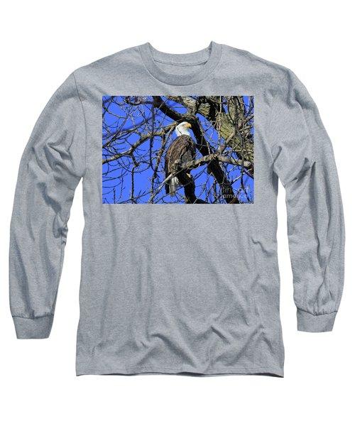 Bald Eagle Long Sleeve T-Shirt by Paula Guttilla