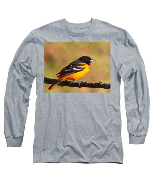 Baltimore Oriole IIi Long Sleeve T-Shirt