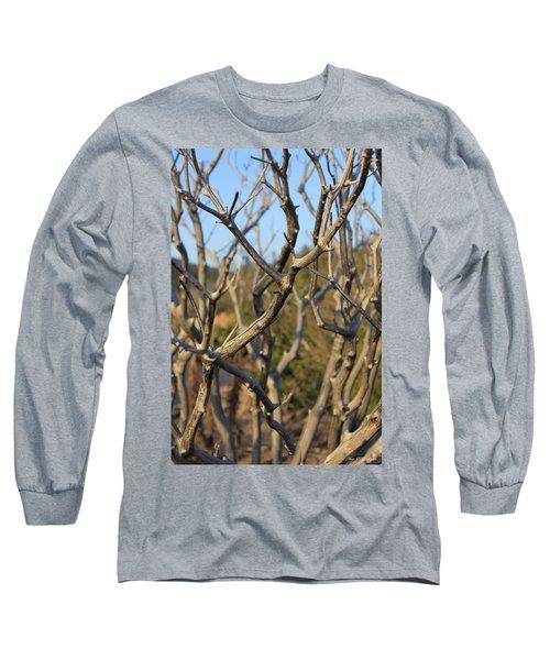Bare The Beauty Long Sleeve T-Shirt