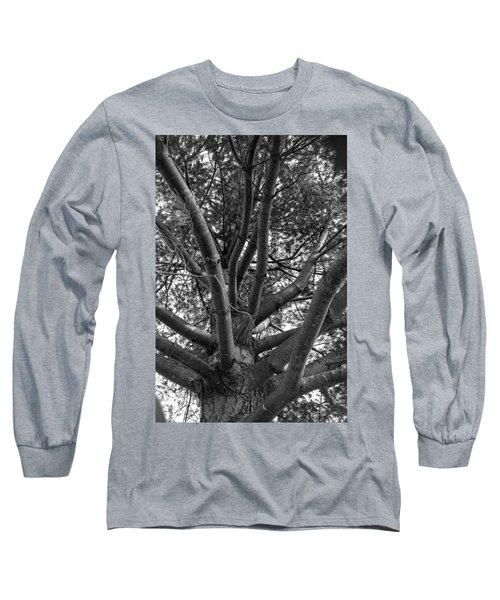 Bare Tree Long Sleeve T-Shirt