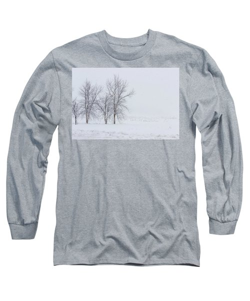 Bare Trees In A Snow Storm Long Sleeve T-Shirt
