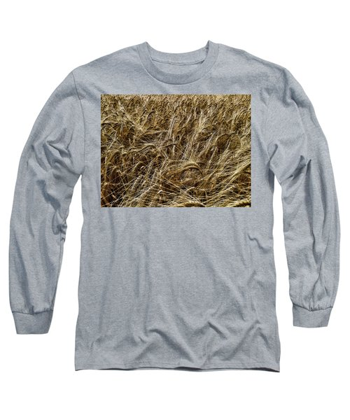 Long Sleeve T-Shirt featuring the photograph Barley by RKAB Works