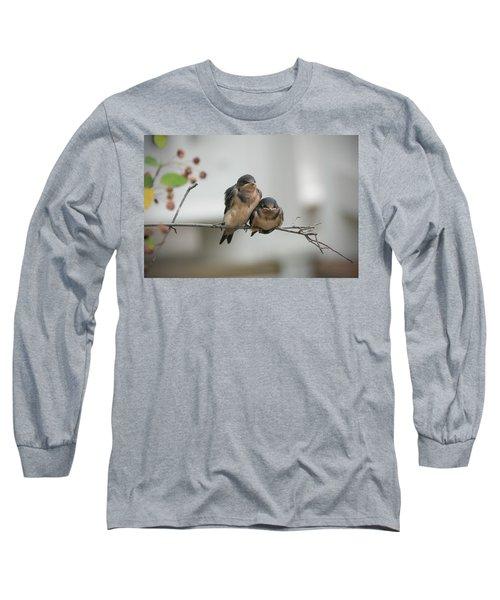 Barn Swallow Fledglings Long Sleeve T-Shirt