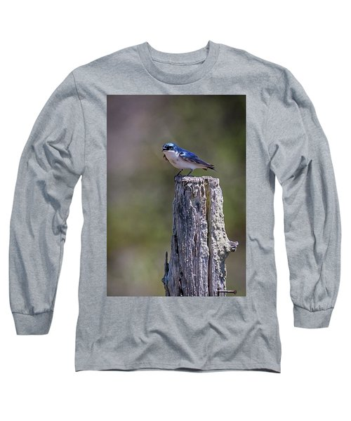 Tree Swallow Long Sleeve T-Shirt