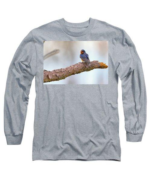 Barn Swallow On Assateague Island Long Sleeve T-Shirt