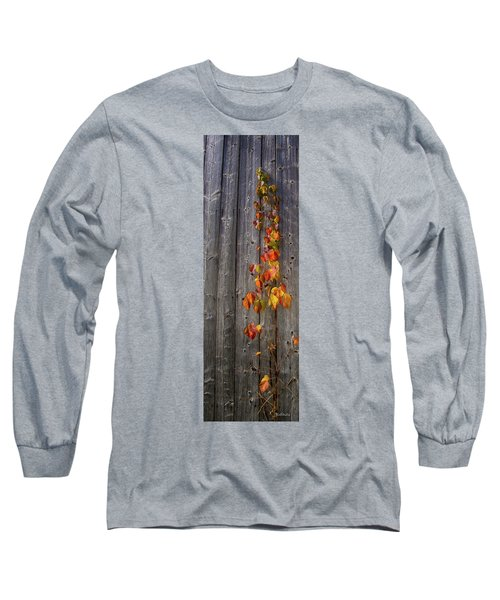Barnyard Vine Long Sleeve T-Shirt