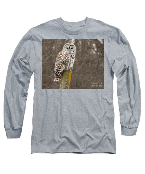 Barred Owl Long Sleeve T-Shirt by Kathy M Krause