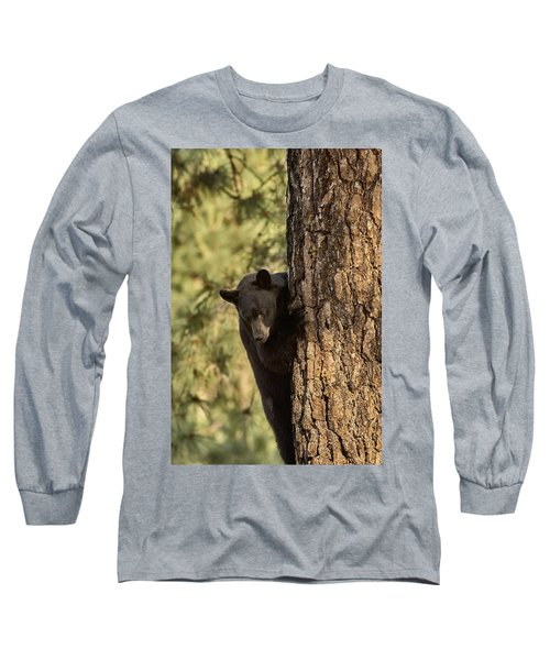 Bear3 Long Sleeve T-Shirt by Loni Collins