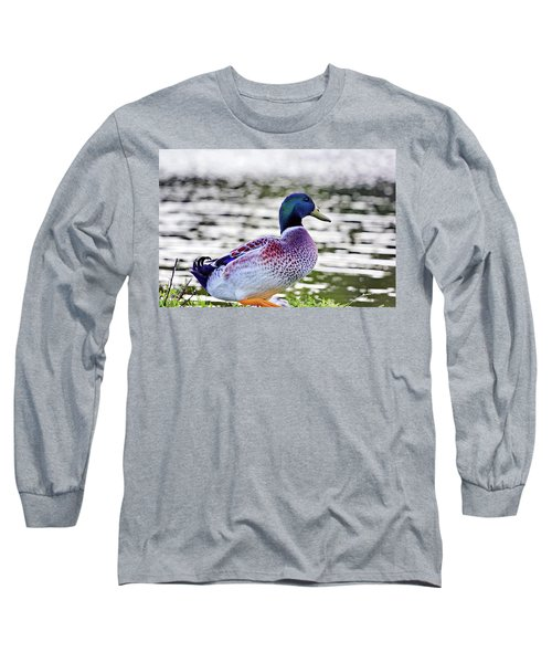 Beautiful Vibrant Mallard Duck Long Sleeve T-Shirt