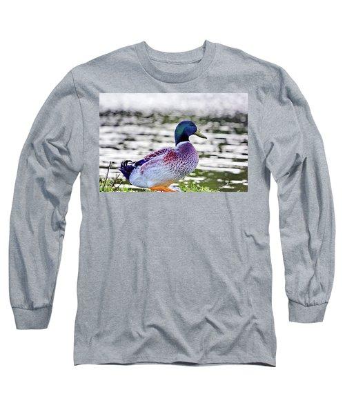 Beautiful Vibrant Mallard Duck Long Sleeve T-Shirt