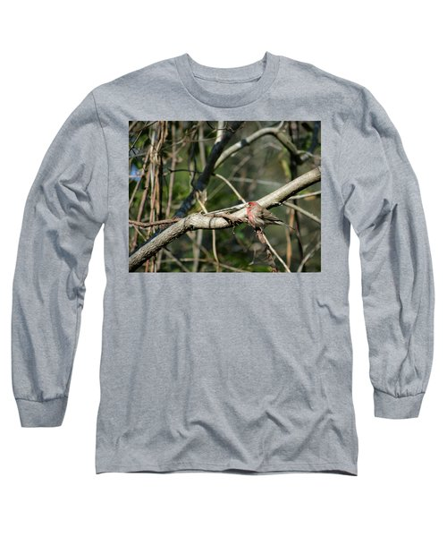 Long Sleeve T-Shirt featuring the photograph Beautiful Winter Day by Cathy Harper