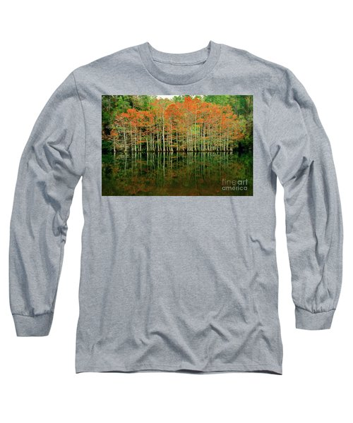 Beaver's Bend Cypress All In A Row Long Sleeve T-Shirt by Tamyra Ayles