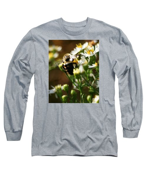 Bee And Spotted Cucumber Beetle On Aster Long Sleeve T-Shirt