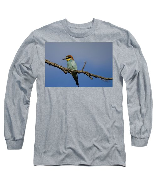 Bee Eater  Long Sleeve T-Shirt