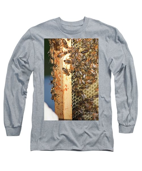 Bee Hive 4 Long Sleeve T-Shirt by Janie Johnson