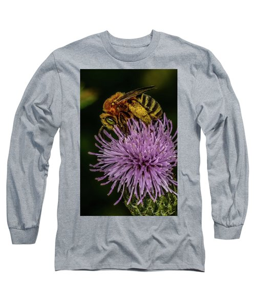 Long Sleeve T-Shirt featuring the photograph Bee On A Thistle by Paul Freidlund