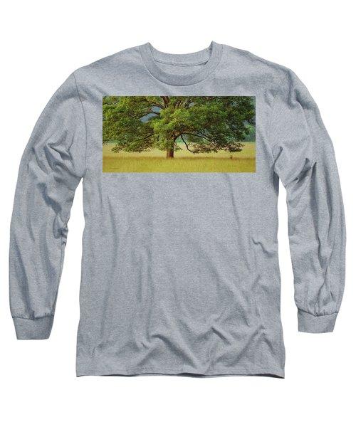 Big Oak Long Sleeve T-Shirt