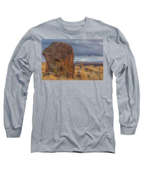 Big Rock At Lava Beds Long Sleeve T-Shirt