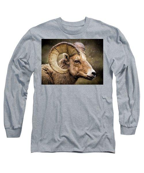 Bighorn Sheep In Winter Long Sleeve T-Shirt