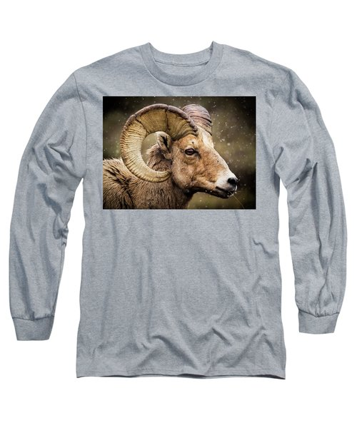 Bighorn Sheep In Winter Long Sleeve T-Shirt