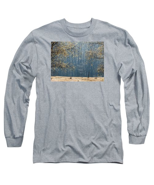 Birch Forest To The Morning Sun Long Sleeve T-Shirt by Odon Czintos