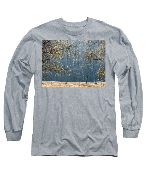 Birch Forest To The Morning Sun Long Sleeve T-Shirt