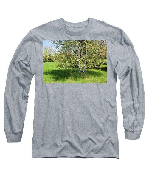 Birch Tree Long Sleeve T-Shirt