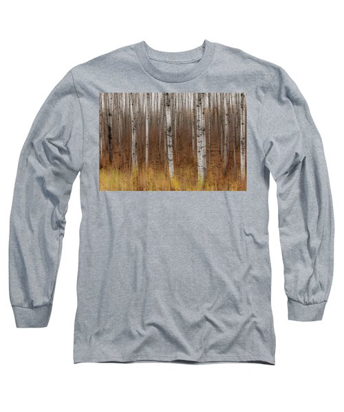 Birch Trees Abstract #2 Long Sleeve T-Shirt by Patti Deters