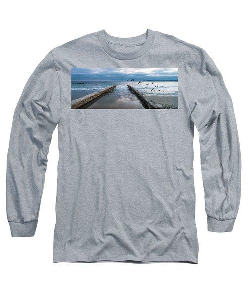 Bird Flight Long Sleeve T-Shirt