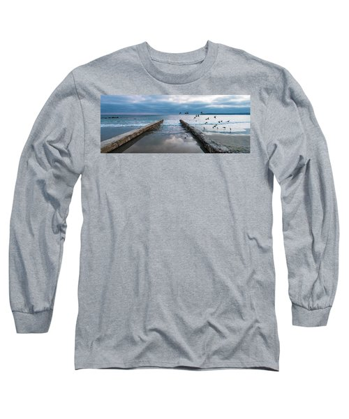 Bird Flight Long Sleeve T-Shirt