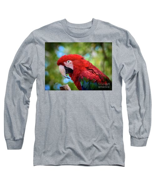 Long Sleeve T-Shirt featuring the photograph Bird In Red by Lisa L Silva