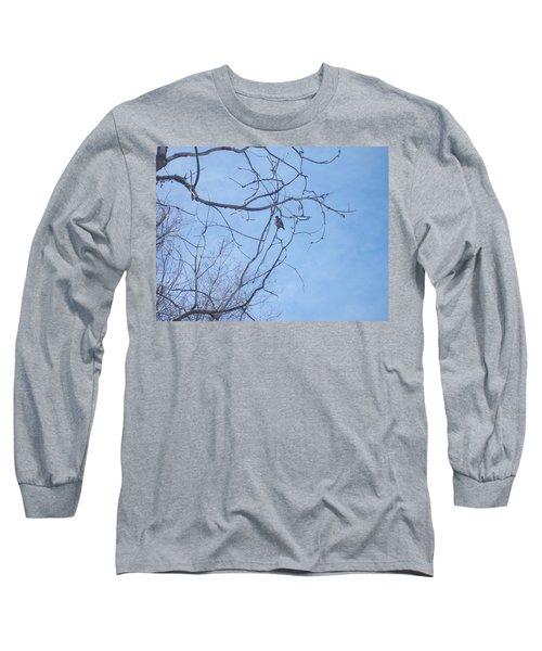 Bird On A Limb Long Sleeve T-Shirt by Jewel Hengen