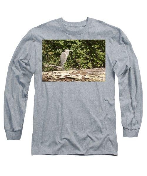 Bird On A Log Long Sleeve T-Shirt by Ricky Dean