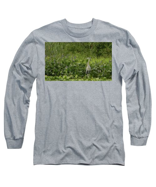 Bird Waiting Long Sleeve T-Shirt