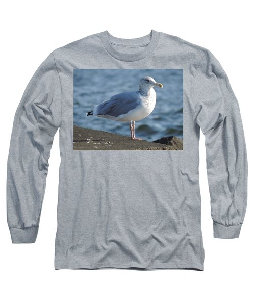 Birds In The Air  Long Sleeve T-Shirt