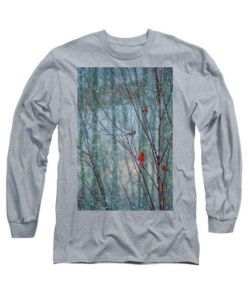 Birds On A Snowy Day Long Sleeve T-Shirt