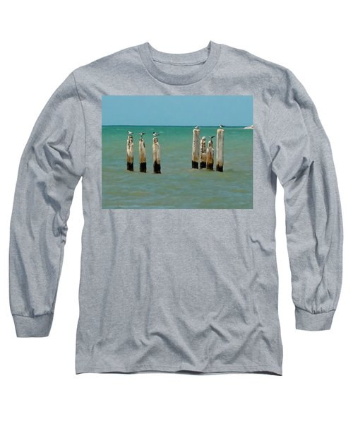 Birds On Sticks Long Sleeve T-Shirt