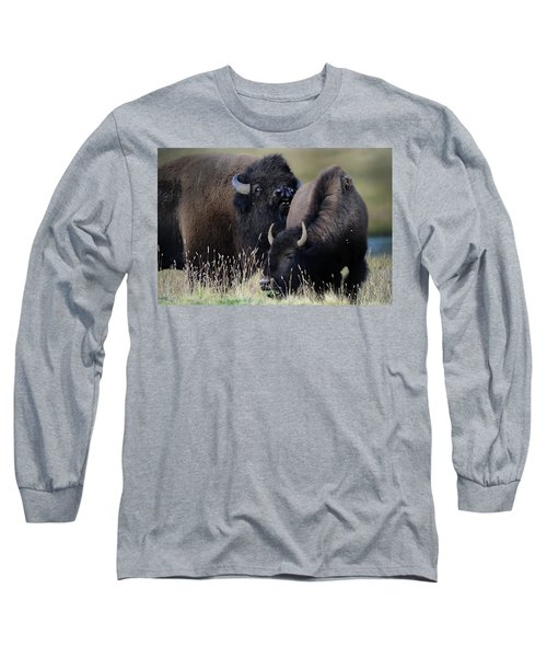 Bison Grasses Long Sleeve T-Shirt