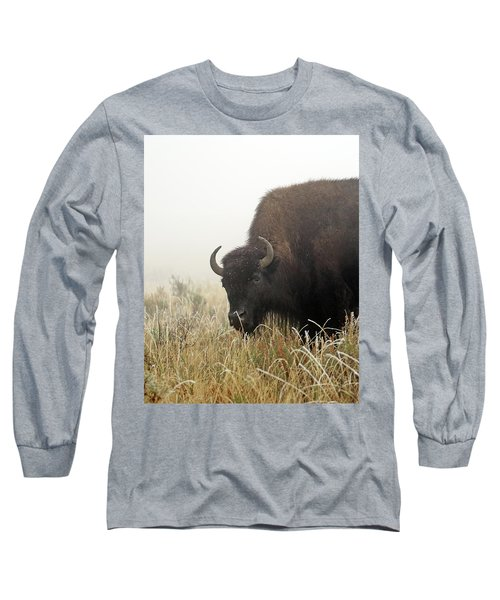 Bison In The Frosty Morning Long Sleeve T-Shirt