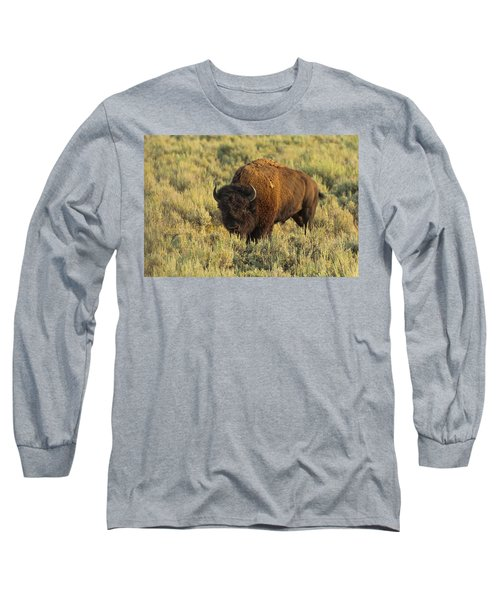 Bison Long Sleeve T-Shirt by Sebastian Musial