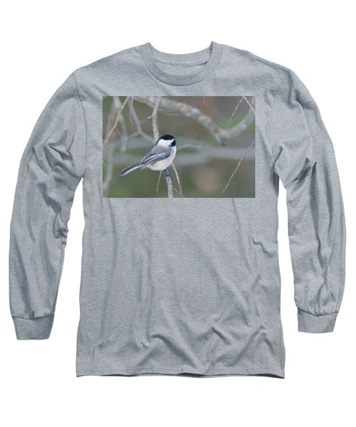 Black Capped Chickadee 1379 Long Sleeve T-Shirt by Michael Peychich