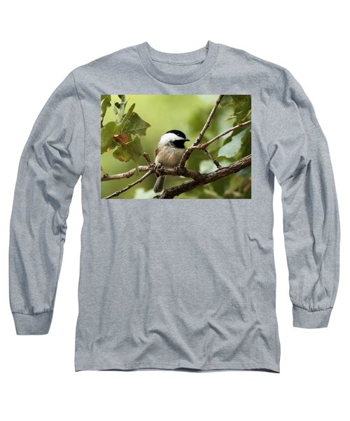 Black Capped Chickadee On Branch Long Sleeve T-Shirt by Sheila Brown