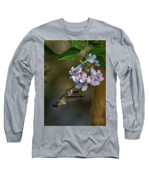 Black-chinned Hummingbird Long Sleeve T-Shirt by Martina Thompson
