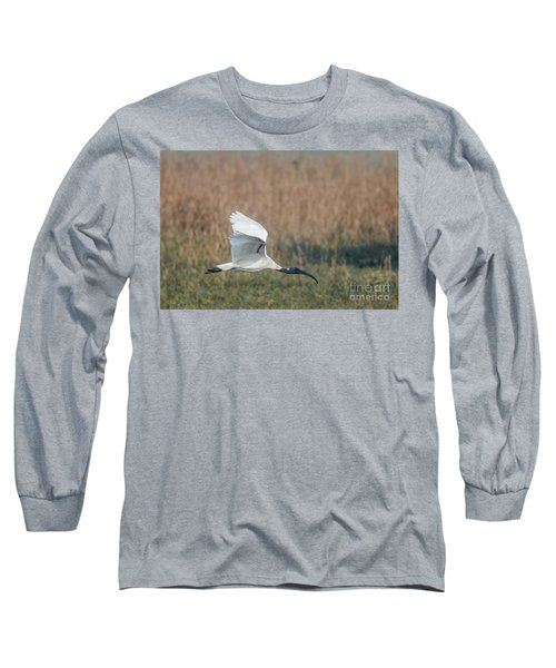 Black-headed Ibis 01 Long Sleeve T-Shirt