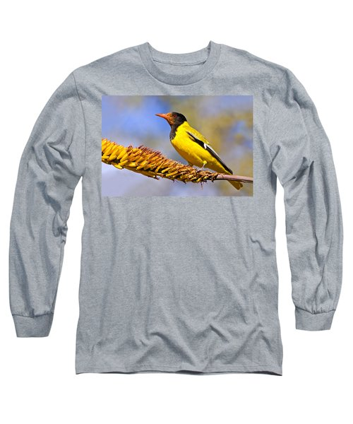 Black-headed Oriole Long Sleeve T-Shirt