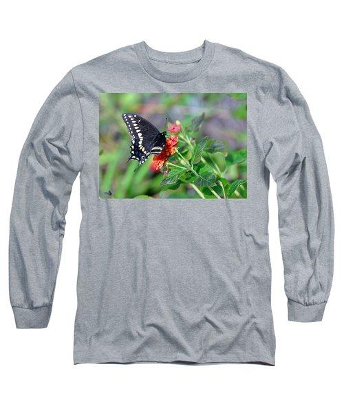Black Swallowtail Long Sleeve T-Shirt by Kay Lovingood