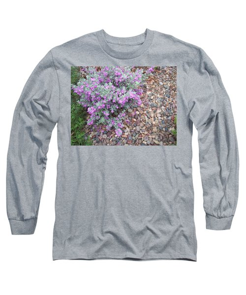 Blooms Long Sleeve T-Shirt by Mordecai Colodner