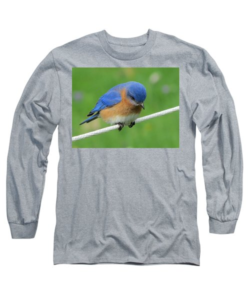 Long Sleeve T-Shirt featuring the painting Blue Bird On Clothesline by Betty Pieper